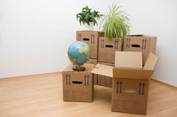 Moving Apartment County Down | Flat Removals County Down