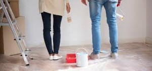 DIY House Painting Products